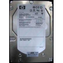 HP 454228-001 146Gb 15k SAS HDD (Брянск)