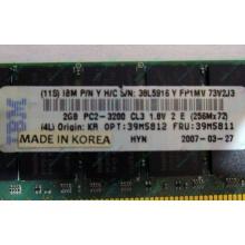 IBM 39M5811 39M5812 2Gb (2048Mb) DDR2 ECC Reg memory (Брянск)