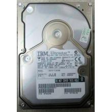 Жесткий диск 18.2Gb IBM Ultrastar DDYS-T18350 Ultra3 SCSI (Брянск)