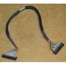 FDD-кабель HP 271946-006 для HP ML370 G3 G4 (Брянск)