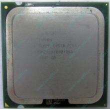 Процессор Intel Pentium-4 521 (2.8GHz /1Mb /800MHz /HT) SL8PP s.775 (Брянск)
